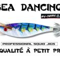 Test de la Sea Dancing Fu-Shima