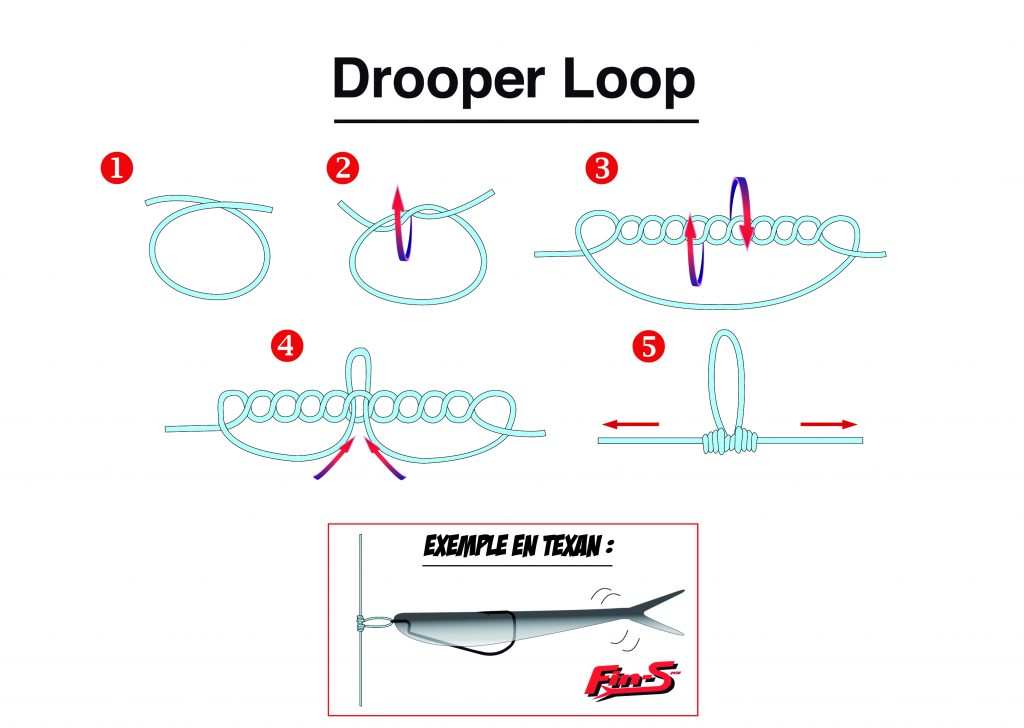 Noeud Drooper Loop