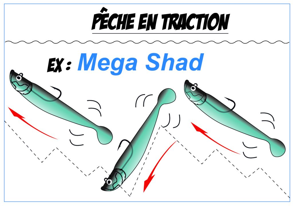 Pêche en Traction - Mega Shad