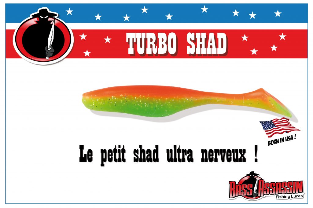 Turbo Shad Bass Assassin : petit…mais nerveux !