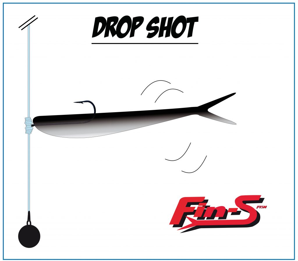 Fin's Fish monté en drop shot