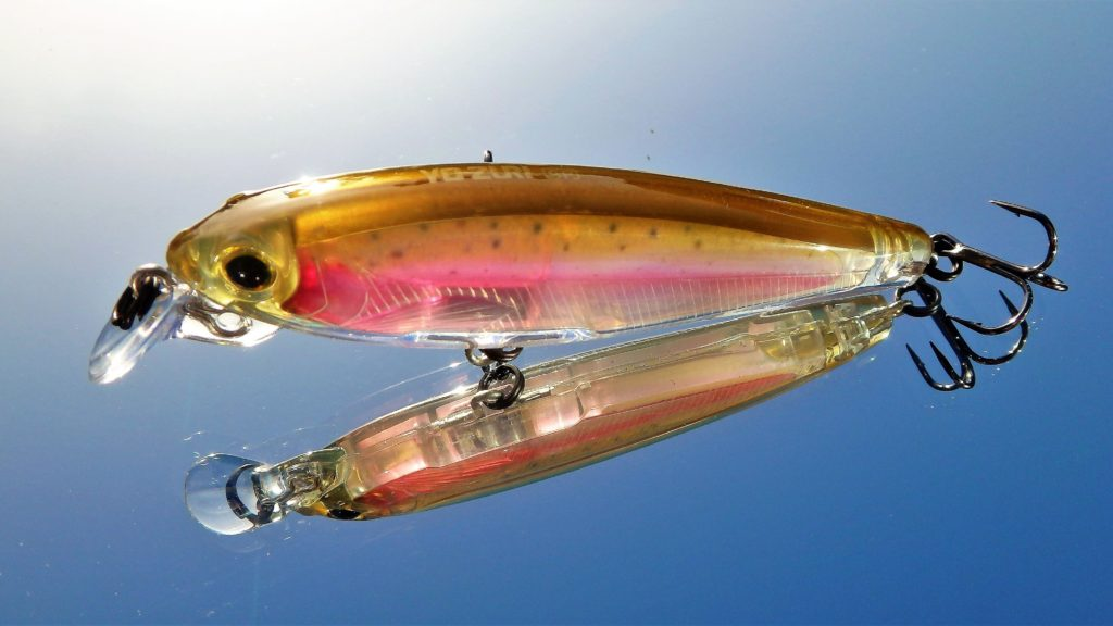 3DR Minnow couleur Rainbow Trout