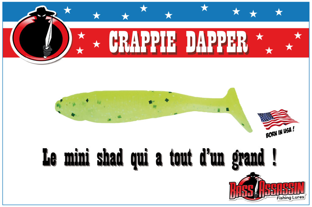 Crappie Dapper : le mini shad qui a tout d'un grand !