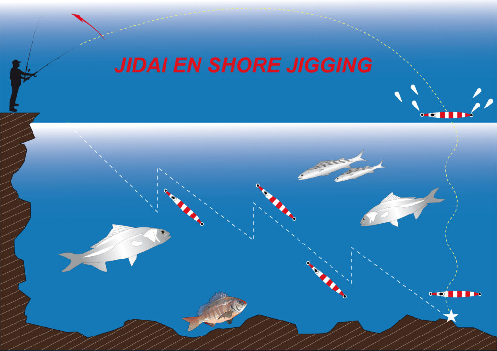 Shore jigging en animation ascensionnelle