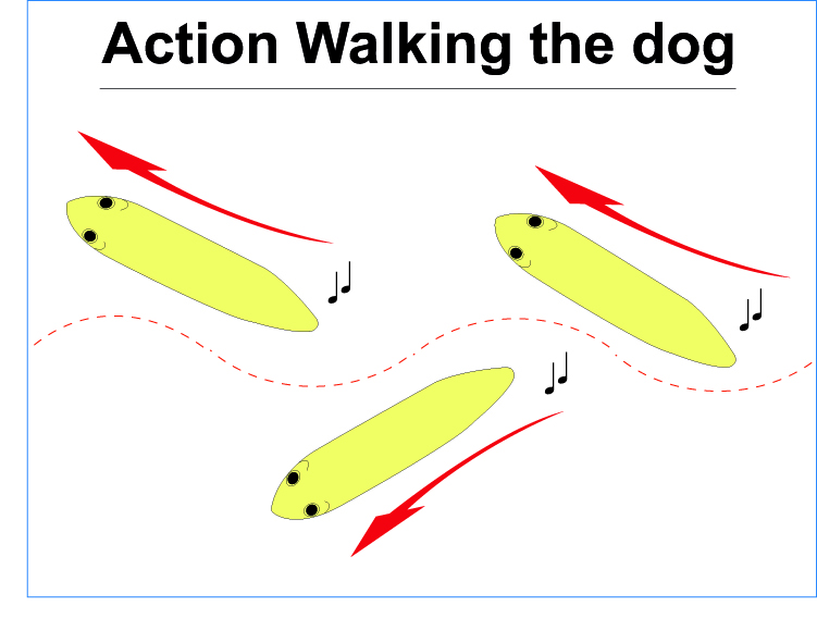 Action walking the dog