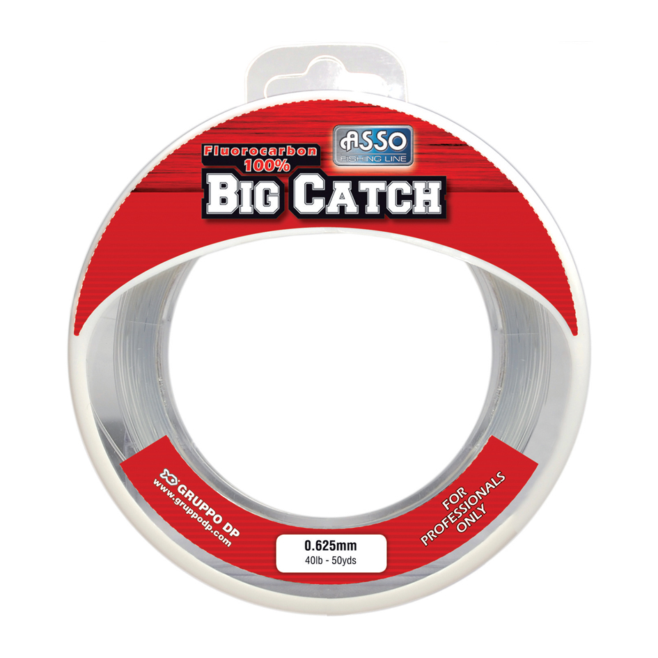 Fluorocarbone Big Catch Asso