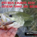 Pêches lights en texan avec la Finess Nose Jig Head