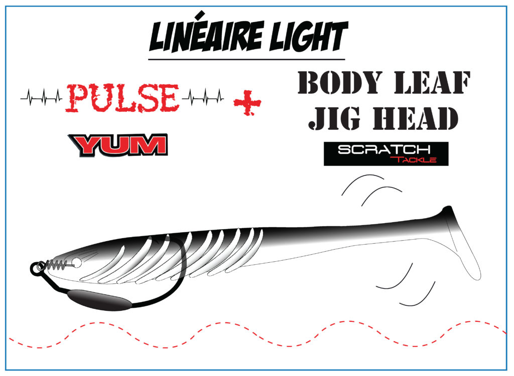 Pulse Yum et texan Leaf jig Scratch Tackle : le top pour les pêches weightless !