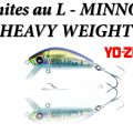 Test du L-Minnow Heavy Weight sur les bonites
